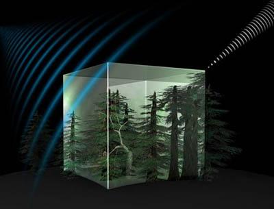 ЕКА запустит в Космос спутник Biomass для определения массы лесов на Земле