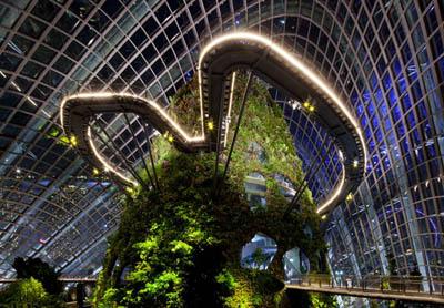 Gardens By The Bay – парк в Сингапуре, ставший образцом ландшафтного дизайна будущего