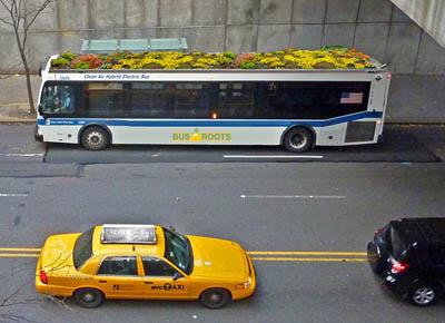Эко-транспорт в вопросах и ответах